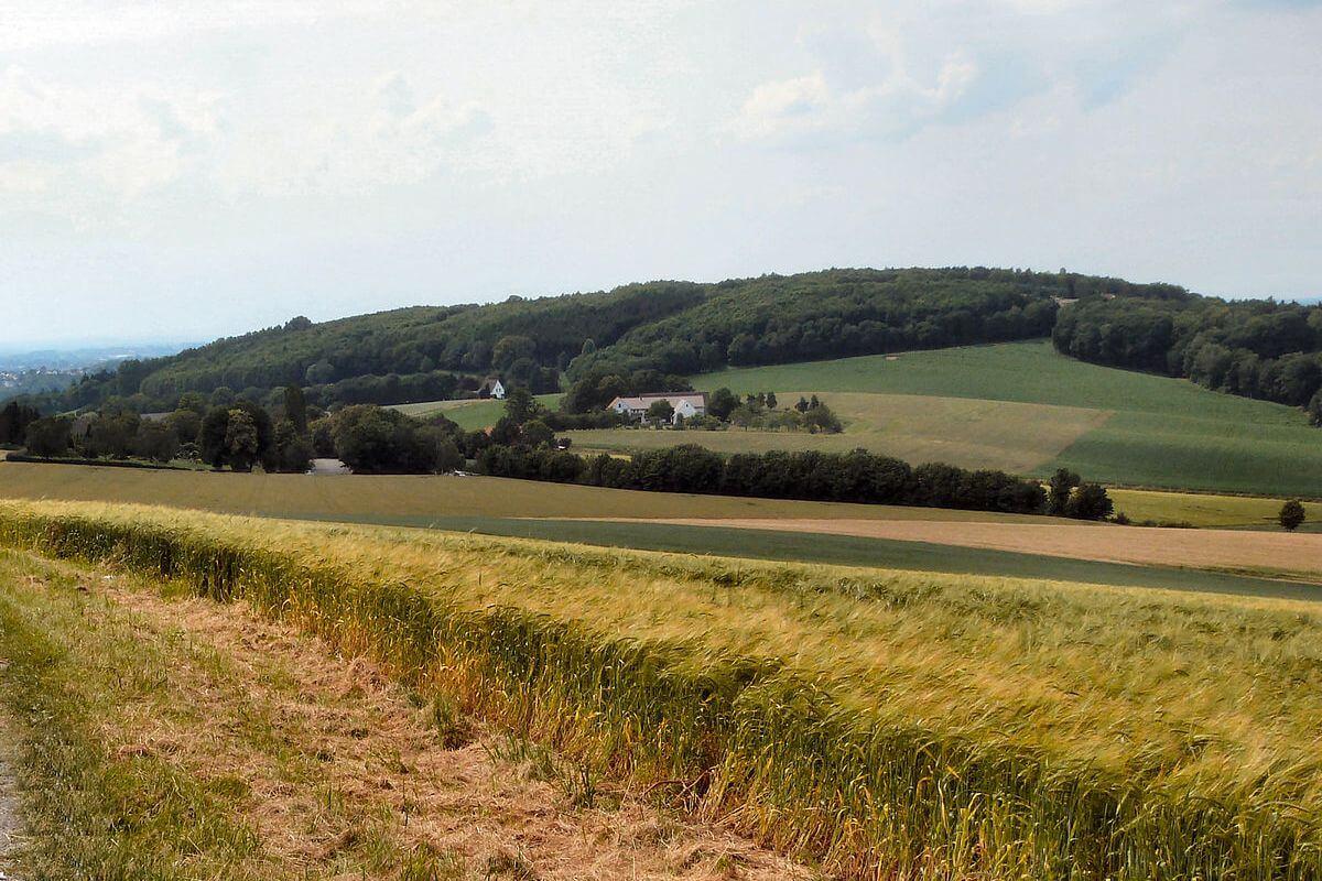 Blick auf den Sendberg bei Frielendorf