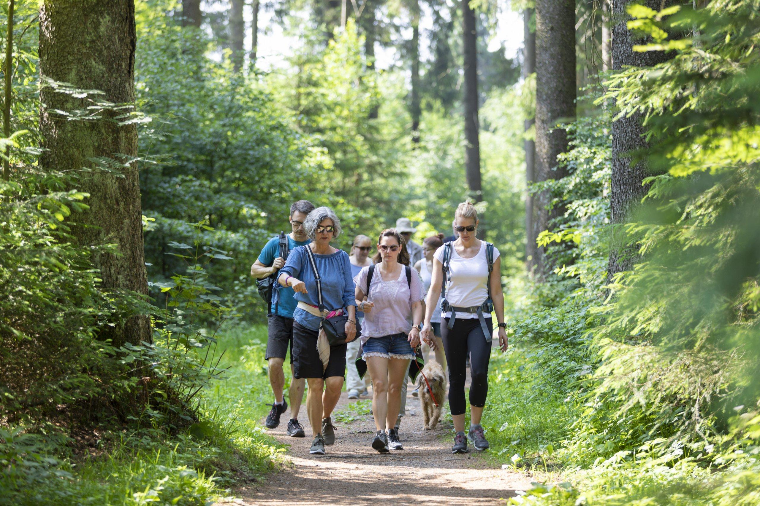 Naturparkführung im Hochmoor
